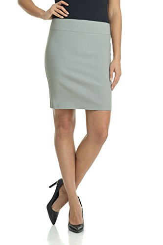 Rekucci Women's Ease Into Comfort Above The Knee Stretch Pencil Skirt 19 inch (Large,Silver)