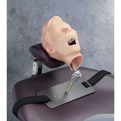 Pediatric X-ray Dental Manikin