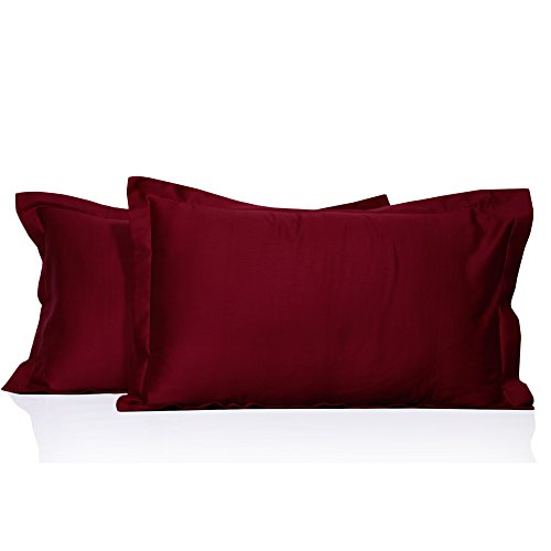 100% Egyptian Cotton Hotel Quality 2 Piece Pillow Shams 600 Thread Count Dust Mite Resistant Solid Pattern (King 20