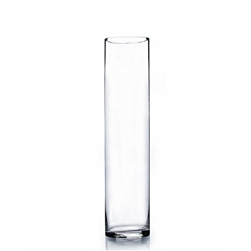 WGVI Clear Cylinder Glass Vase/Candle Holder - 4