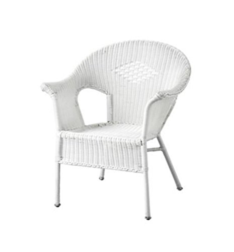 Resin Wicker Arm Chair (Resin Wicker Porch Furniture)