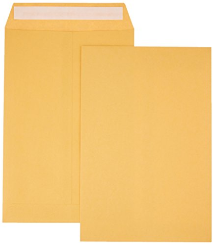 AmazonBasics Catalog Envelopes, Peel & Seal, 6 x 9 Inch, Brown Kraft, 100-Pack