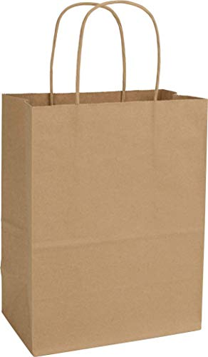 Halloween Brown Paper Bag Decorating (12CT Large Brown Biodegradable Paper, Premium Quality Paper (Sturdy & Thicker), Kraft Bag with Colored Sturdy Handle (Large,)