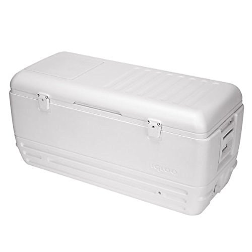 igloo-quick-and-cool-cooler-150-quart-white