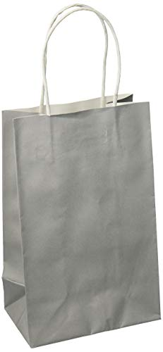 Silver Solid Kraft Bag Cub