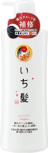 Ichikami Herbal Shampoo with Rice Bran by Kracie Pump Dispenser - 550ml by Kracie(Kanebo Home ()