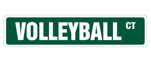 VOLLEYBALL Street Sign signs ball net player team gift