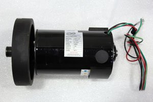 Horizon Omega II 1.75 HP Drive Motor Part Number 016507 Z