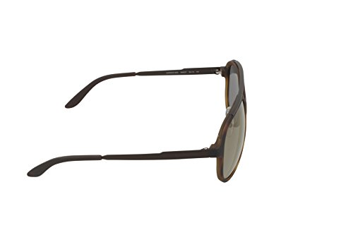 Brown Carrera s Sonnenbrille 96 havana Marron zxx0YXwq