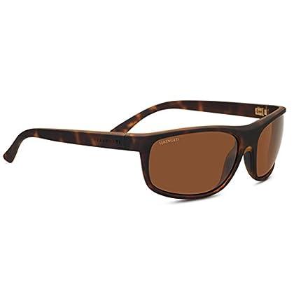 Image of Serengeti Alessio Sunglasses Darktortoise Unisex-Adult Medium