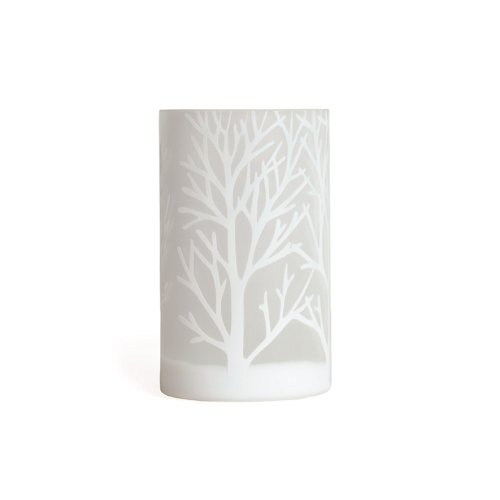 Torre & Tagus 901576A Etched Tree Glass Vase, Medium, White Medium Frosted Glass Vase