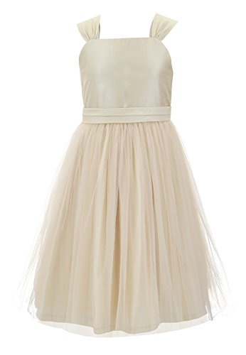 Emma Riley Girls' Tulle Skirt Dress with Sash 8 Champagne