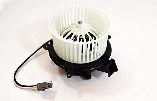LSC 13276234 : GENUINE Heater Fan Blower Motor - NEW from LSC:
