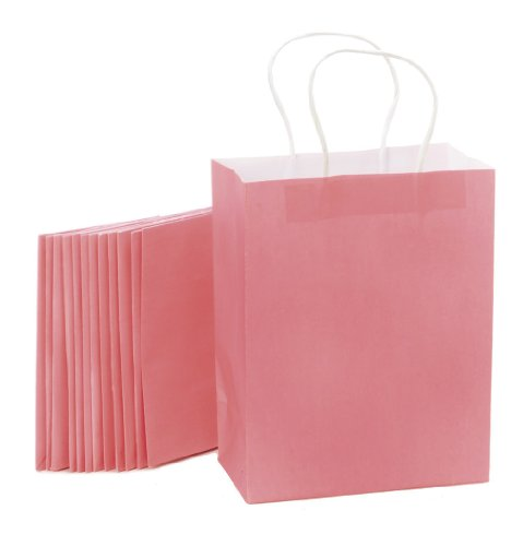 Darice BAG235 13-Piece 4.25 by 8 by 10.25-Inch Paper Bag, Medium, Pink