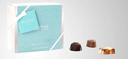 Bouchard Belgian Chocolate Collection Gift Box, 250g (8.82-ounces), Belgium Import