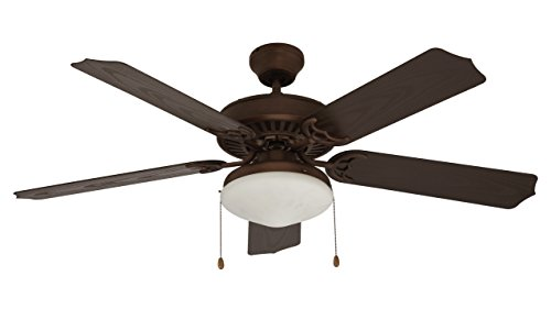 Trans Globe Lighting F-1003 ROB Outdoor Woodrow Ceiling Fan, Rubbed Oil - Glasses Woodrow
