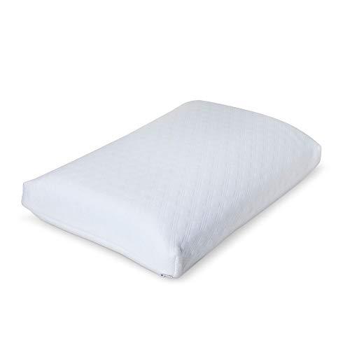 Fieldcrest Serene Foam Luxury Bed Pillow (Standard/Queen) White