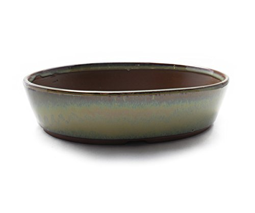 Bonsai Pot Ceramic Oval Shape Glazed (8.25