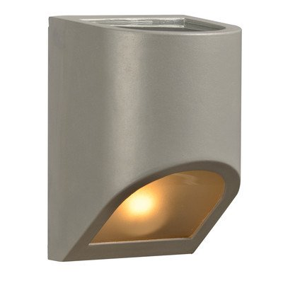 Perry 1 Light Outdoor Wall Sconce Finish: Silver, Bulb Type: 60W A19 incandescent bulb (not included)