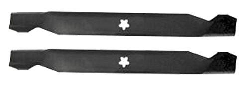 Oregon Cuchilla de Repuesto (2 Unidades) 138498, 127842, 138971 ...
