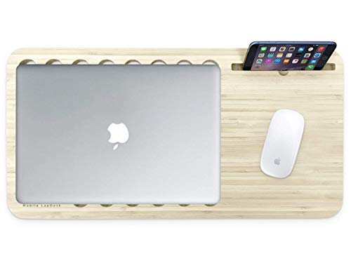 iSkelter Slate 2.0 Mobile LapDesk - The Essential Laptop Accessory for Students, Professionals, Designers, and Gamers (With Desk Space, For 15 inch Laptops, Premium Light ()