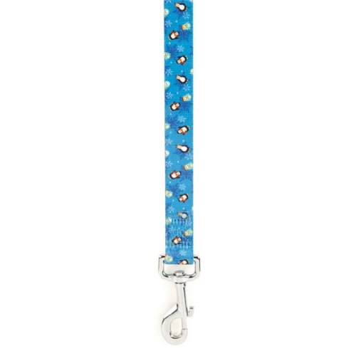 Casual Canine Polyester North Pole Pals Lead, 6 by 1-Inch, Blue