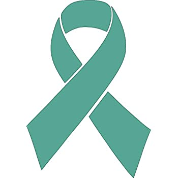 Chic Teal Cervical And Ovarian Cancer Awareness Ribbon Car Magnet Decal Heavy Duty Waterproof Nieuw Wasschappelse Oldtimerrit Nl