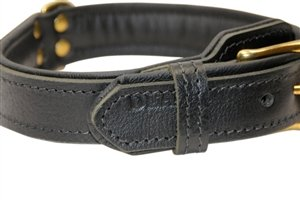 """Dean & Tyler """"Italian Tailor"""" Black Dog Collar with Black Padding and Solid Brass Hardware, Size 30-Inch by 1-1/4-Inch, Fits Neck 28-Inch to 32-Inch"""