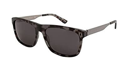 Calvin Klein Collection CK8003S Sunglasses 004 Black Tortoise
