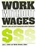 Work Without Wages 9780791401071