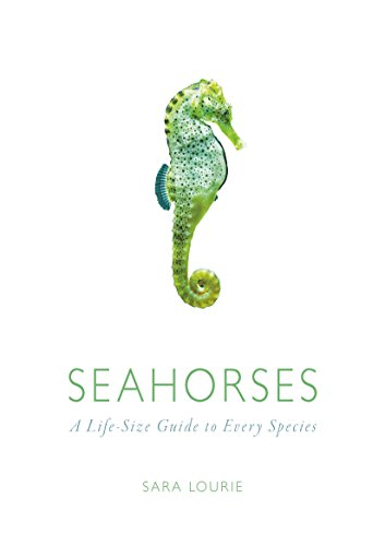 - Seahorses: A Life-Size Guide to Every Species