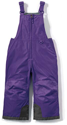 TSLA Toddler's Snow Bib Windproof Ski Insulated Water-Repel Rip-Stop Overalls, Snow Overall(bko65) - Purple, 5T [5-6Y]