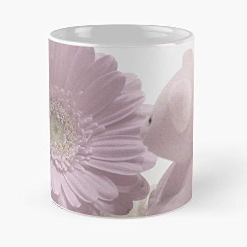 Teddy Bears Gerberas Pink - Best Gift Ceramic Coffee Mugs 11 Oz