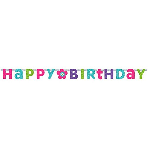 Prismatic Letter (Charming Purple and Teal Birthday Party Prismatic Letter Banner Decoration, Multi , 8 Feet x 6 1/2