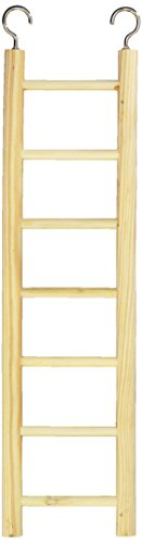 Prevue Pet Products BPV384 Birdie Basics 7-Step Wood Ladder for Bird, 12-Inch