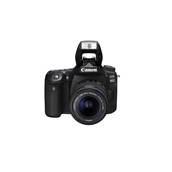 RetinaPix Canon EOS 90D (EF-S18-55mm f/4-5.6 is STM)