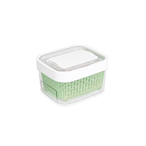 OXO Good Grips GreenSaver Produce Keeper - Small (Color May Vary) (Colanders Rinsing Basket)
