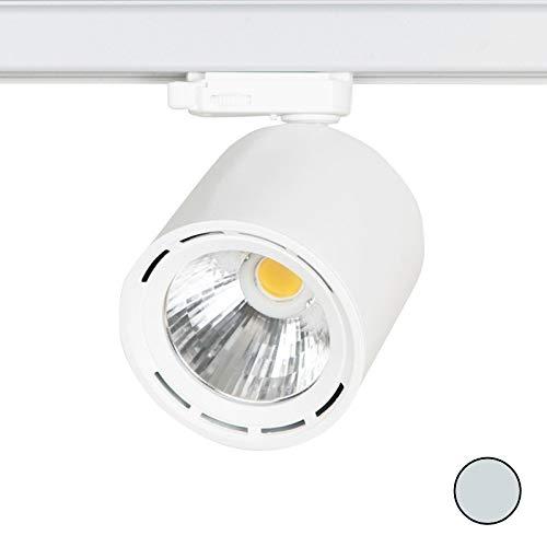Pack de 5 focos LED de 3 fases, 20 W, 3000 K, 2200 lm, 24°, color ...