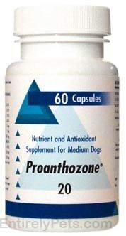 Proanthozone 20 Medium Dog 60 Capsules by Proanthozone 20mg For Medium Dogs, 60 Capsules
