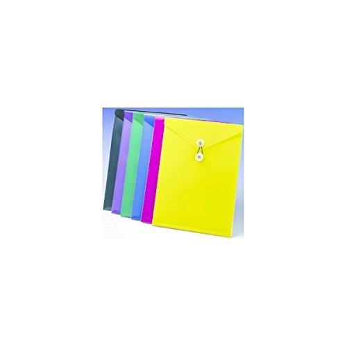 12PK ESSE 52888 Pendaflex ViewFront Poly ()