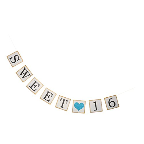 Jili Online Sweet 16 Heart Birthday Celebration Party Paper Banner Bunting Garland Hanging String Sign - (Sweet 16 Party Supplies Blue)