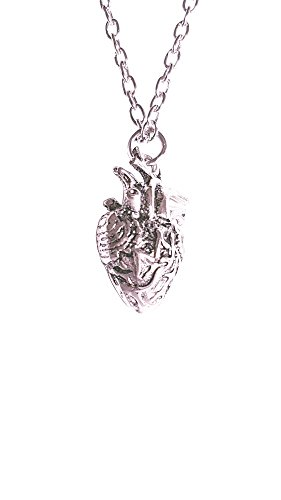 Anatomical Necklace Anatomic Pendant Nickel product image