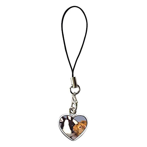 GiftJewelryShop Silver Plated Bunny And Guinea Pig Flower Photo Dangle Heart Strap hanging Chain for Phone Cell Phone Charm