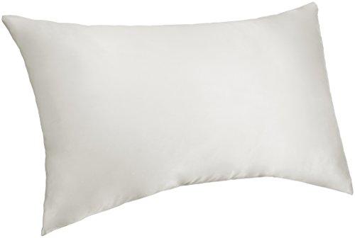 Pinzon Mulberry Silk Pillowcase - Queen,  White