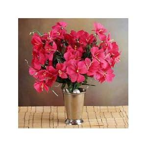 6 Fuchsia Bushes Silk Mini PRIMROSES Wedding Flowers Bouquets Decorations Sale 72