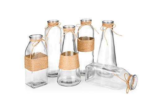 (Glass Vases in Differing Unique Shapes Creative Rope Design - Set of 6)