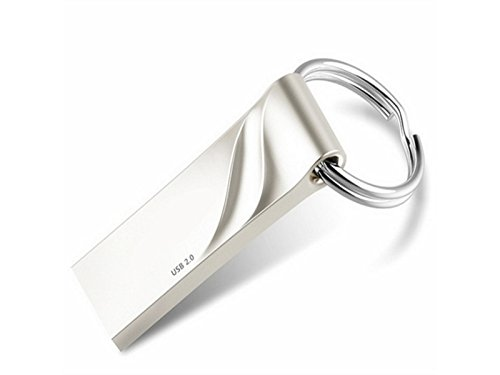 OVIIVO Memory Cases 16GB Mini USB2.0 Memory Stick Thumb Drive Flash Drive Metal Waterproof Shockproof U Disk (Silver) by OVIIVO