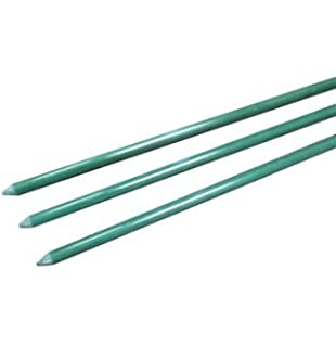Amazoncom EcoStake 14 X 60 Pack Of 20 Garden Stakes