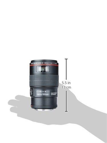 Canon Ef 100mm f/ 2.8l Macro Lens