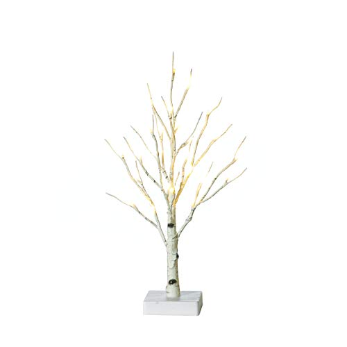 Hairui Lighted Tabletop Birch Tree 24 LED 18 Inches Battery Operated with Timer Indoor Use ()